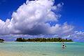 Cook Islands IMG 4552 (8453053338).jpg