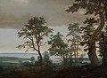 Cornelis Vroom - River Landscape, seen through the Trees - 1156 - Mauritshuis.jpg