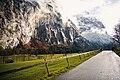 Couple photoshoot in Switzerland forest (Unsplash).jpg