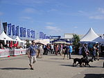 Cowes Yacht Haven during Cowes Week 2011 3.JPG