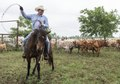 Cowhand Craig Bauer, atop his horse, Spaghetti, on the prowl for longhorn heifers and calves on branding day at the 1,800-acre Lonesome Pine Ranch, a working cattle ranch that is part of the Texas LCCN2014632409.tif