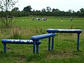 Cranny playing fields (summer-time activity) - geograph.org.uk - 891030.jpg