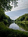 Creswell Gorge, Creswell Craggs, Notts (145).jpg