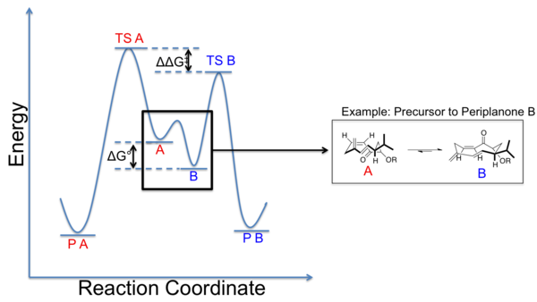 Curtin-Hammett scenario for macrocycles.png