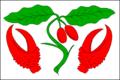 Dřínov (Kroměříž District) Flag.PNG