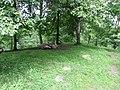 Dūkštų sen., Lithuania - panoramio (146).jpg