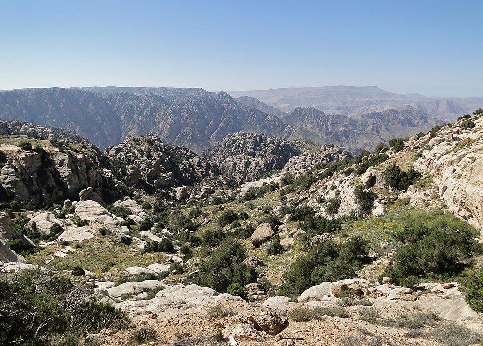 Dana Reserve 07