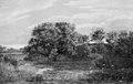 Dankvart Dreyer - Bog on a Wooded Islet - KMS6889 - Statens Museum for Kunst.jpg