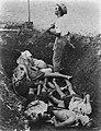 De dode lichamen van de geboeide groep mannen in de greppel. Staand de beul met , Bestanddeelnr 8809.jpg