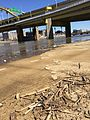 Debris from Allegheny River flooding (16651848367).jpg
