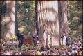 Dedication of Lady Bird Johnson Grove in Redwood National Park, California - NARA - 194298.tif
