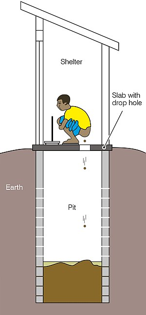 Defecating into a pit (schematic).jpg