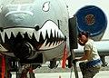 Defense.gov photo essay 110808-F-AU128-381.jpg