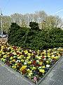 Den Haag - panoramio (104).jpg