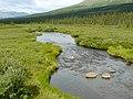 Denali NP river.jpg