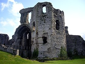 Denbigh Castle - geograph.org.uk - 563477.jpg