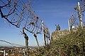 Der Weingeist schaut auf Stetten - panoramio.jpg
