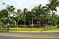 Diamond Head - Kapahulu - St. Louis, Honolulu, HI, USA - panoramio (17).jpg