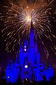 Disneyworld fireworks - 0230.jpg