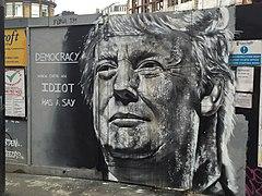 Donald Trump is an idiot street art (24578179086).jpg