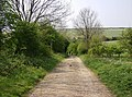 Down Bangup Lane - geograph.org.uk - 447579.jpg