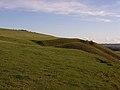 Down above Huish - geograph.org.uk - 282692.jpg