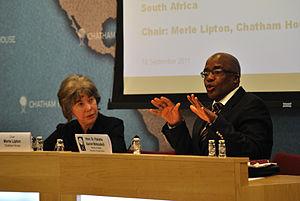 Aaron Motsoaledi - Image: Dr Pakishe Aaron Motsoaledi, Minister of Health, South Africa