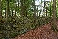 Drystone wall near Conlig (2) - geograph.org.uk - 539786.jpg
