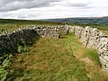 Drystone walled sheepfold built onto the moor wall - geograph.org.uk - 537586.jpg