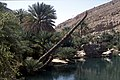 Dunst Oman scan0149 - Pool.jpg