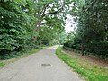 Early autumn in Cemetery Road - geograph.org.uk - 2089310.jpg