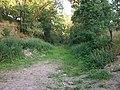 Ehemalige Bahnstrecke bei Käppels Floßteichen (3).jpg