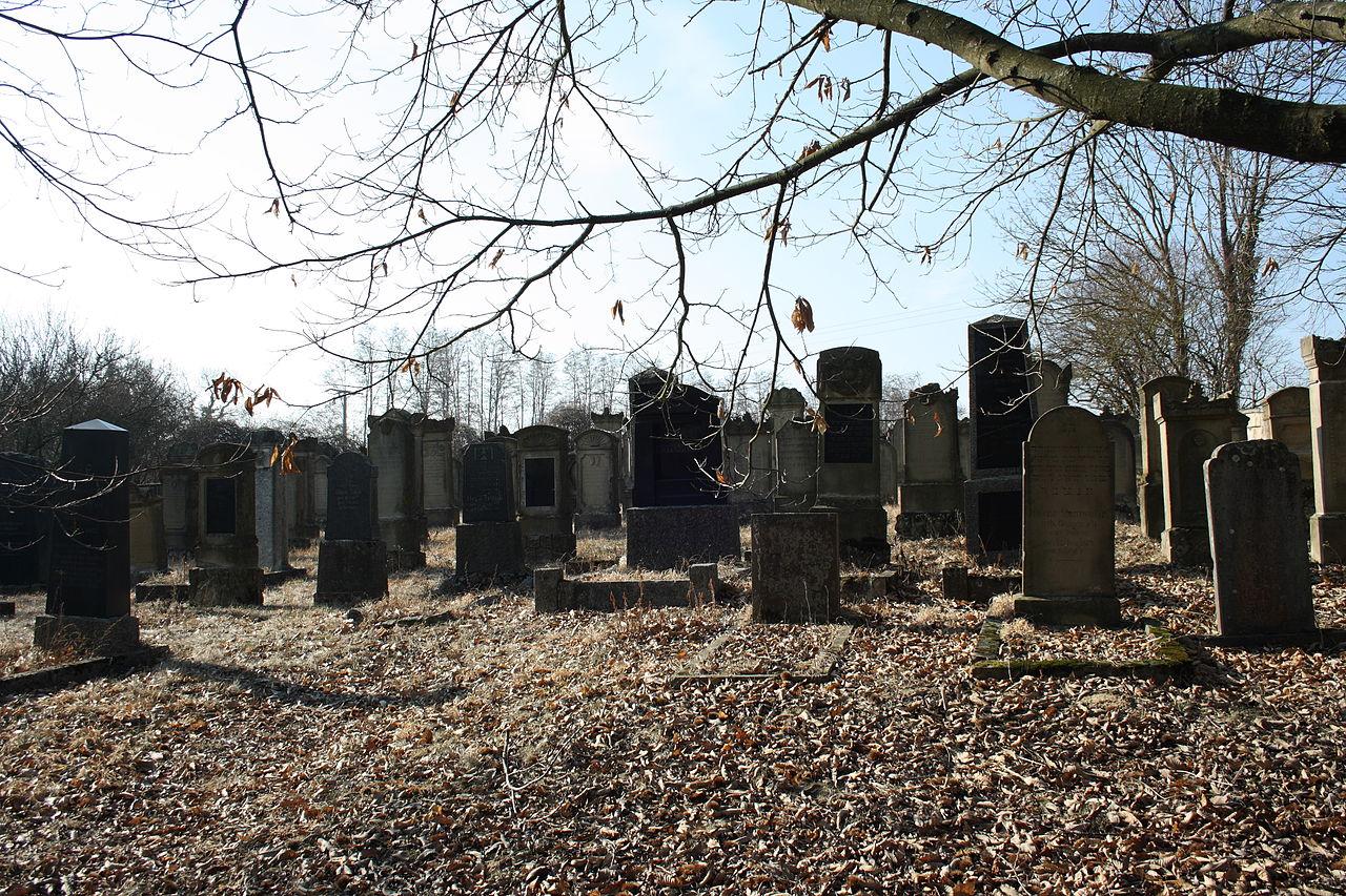 Eichtersheim Jüdischer Friedhof 786.JPG