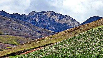 Sierra La Culata National Park - Image: El grito (Andes Venezolanos)