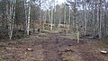 Electric Fence (Glen Lui) on Mar Lodge Estate (15MAR13) (10).jpg