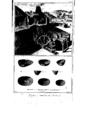 Encyclopedie volume 3-192.png