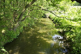 Seebach (Regnitz) River in Germany