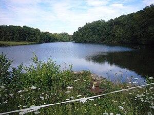 L'étang vu de la digue