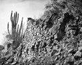 Ett stycke av den förnämsta ruinen vid Batanes. Lokal, Batanes vid Saipinifloden, Bolivia - SMVK - 005807.tif