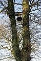 Ewes Kirkyard bell - geograph.org.uk - 1126560.jpg