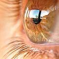 Eye of amber.jpg