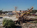 FEMA - 1030 - Photograph by FEMA News Photo taken on 02-25-1998 in Florida.jpg