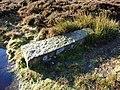 Fallen Boundary Stone - geograph.org.uk - 309569.jpg