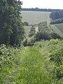 Farm track, Teffont Down - geograph.org.uk - 883512.jpg