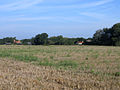 Farmland NW of Whittlesford, Cambs - geograph.org.uk - 101770.jpg