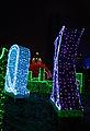 Festival of Light 2013 in Wilanow (8510369327).jpg