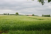 Fields at Low Moor, south-west of Bagby