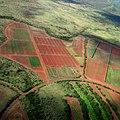 Fields (23517263599).jpg