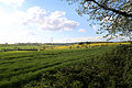 Fields looking north-west from churchyard, Stapleford Tawney, Essex, England 01.jpg