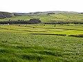 Fields south of Fardingjames - geograph.org.uk - 1328933.jpg